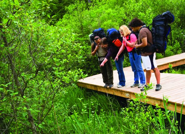 Hikers stand on a boardwalk