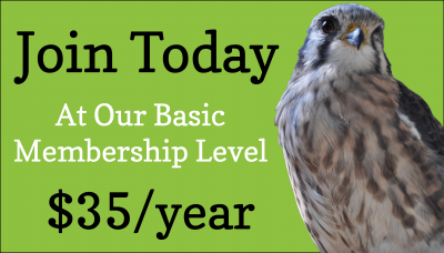 Join today at our basic membership level of $35/year