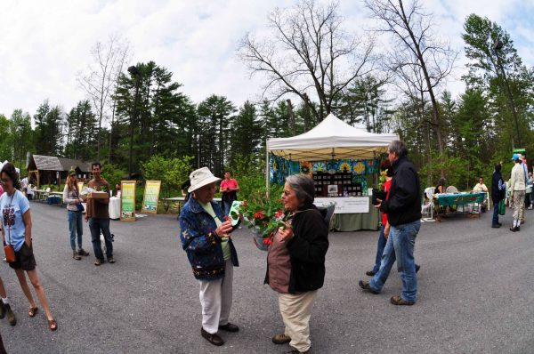 Visitors at the Native Plant Festival and Sale